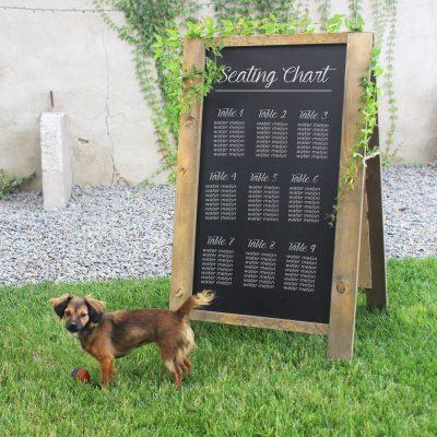 folding-chalkboard-rental